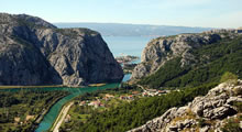 taxi transfer omis